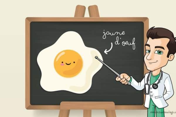 Est-ce que le jaune d'œuf est bon pour la santé ?